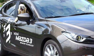 szia.sk - Real-K: Mazda3 (2015)