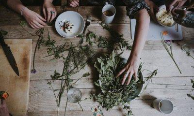 szia.sk - A gyógynövénytermesztéssel foglalkozókat segítené a Herbaland projekt